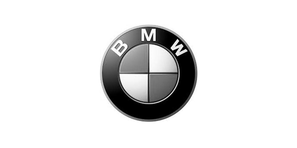 BMW logo gray